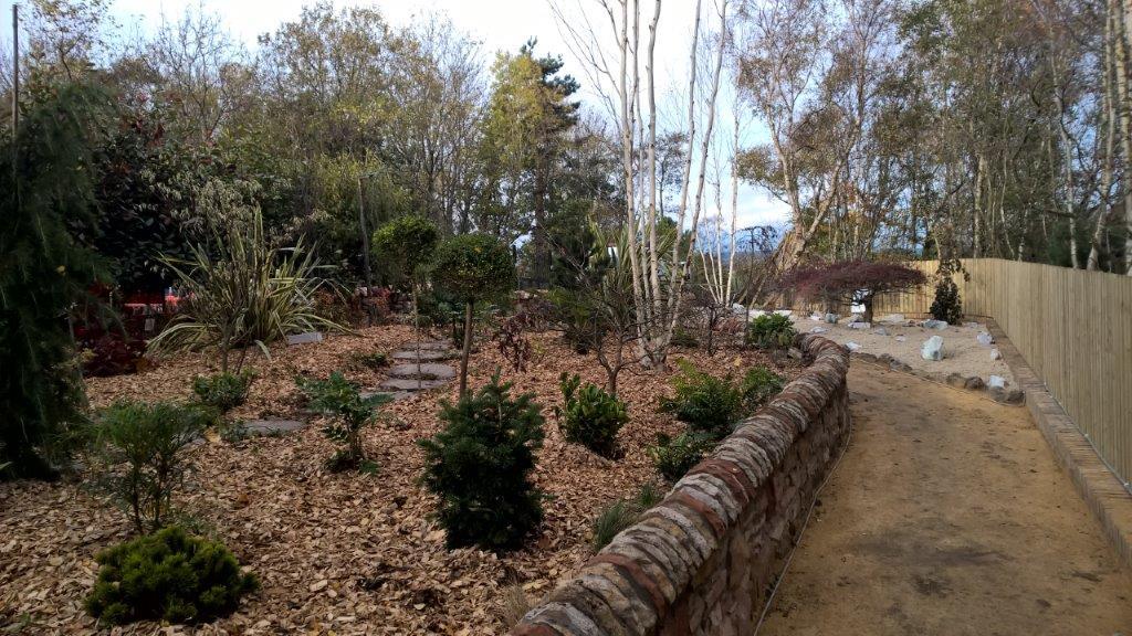 garden design with bushes