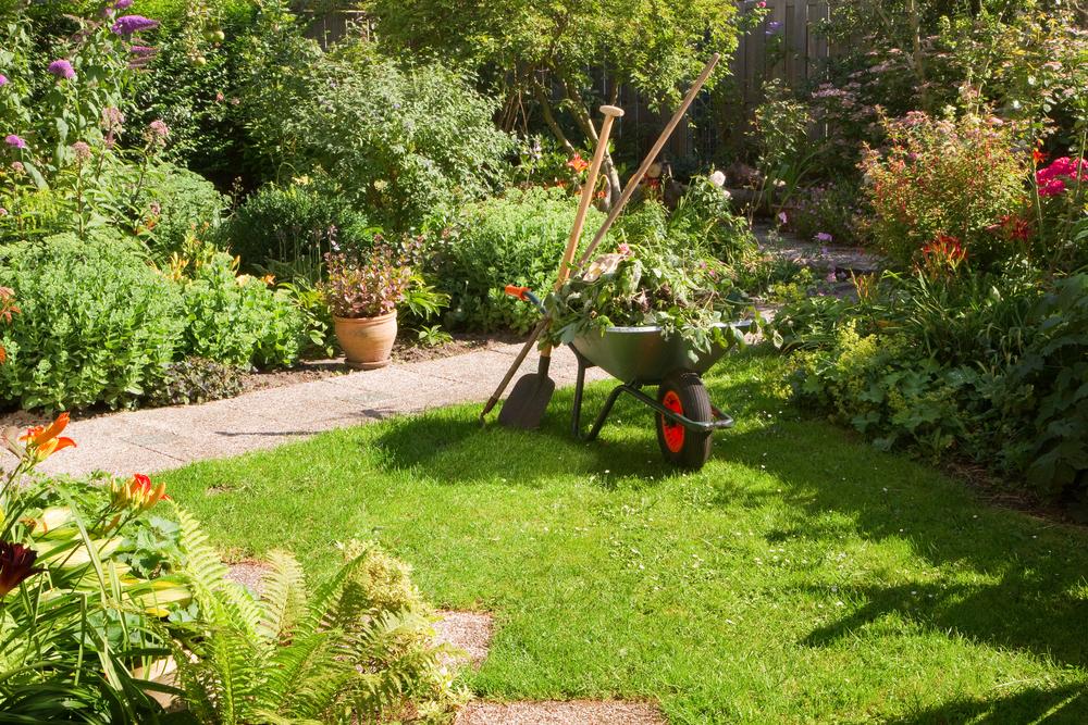 summer work garden