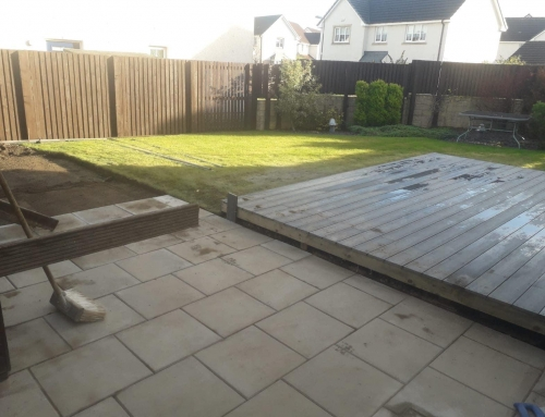 Landscaping Adventures – Replacing old with new and creating a space to relax.